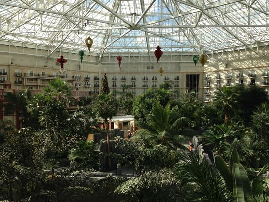 Gaylord Palms Resort & Convention Center: View from interior balcony