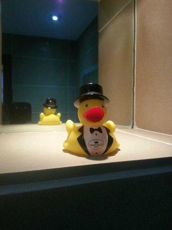 Europa Hotel - Belfast : Rubber duckie