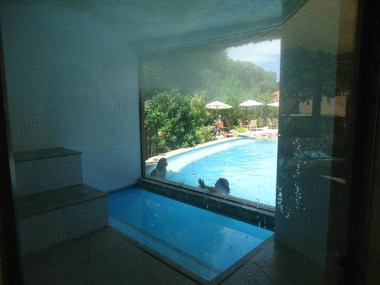 Corais e Conchas: Sauna com vista para a piscina.
