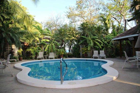 Casa Cook: Pool