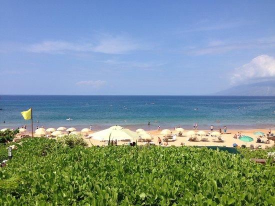 Ferraro's Bar e Ristorante: Hovering above the beach...