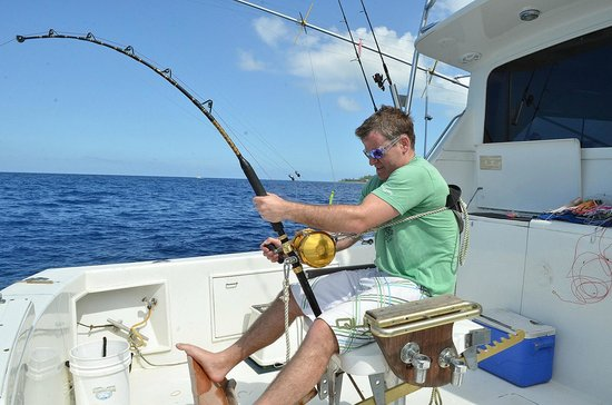 Wahoo picture of slackem fishing charters george town for Grand cayman fishing
