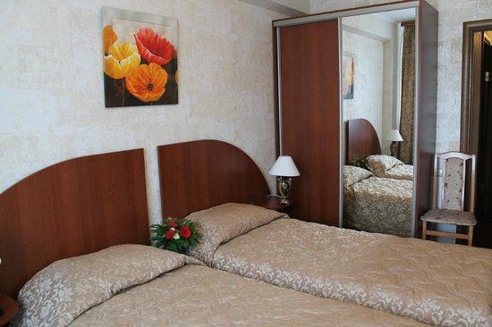 Troparevo Hotel and Health Center : Стандарт