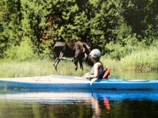 Ponderosa State Park : Canoeing in the North Fork of Payette Lake.