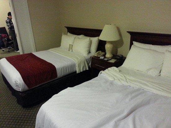 Comfort Suites Oakbrook Terrace: 더블베드