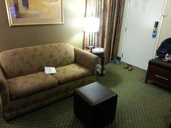 Comfort Suites Oakbrook Terrace: 깨끗한 거실