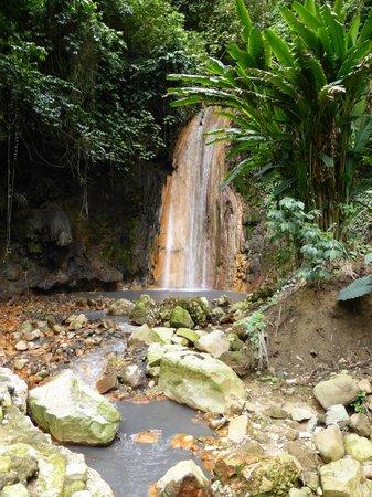 Diamond Botanical Gardens: The Diamond Waterfall
