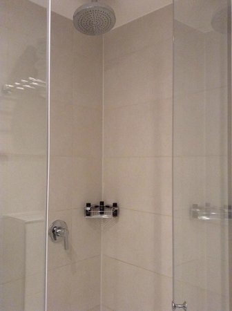 The Westbridge Hotel: Clean spacious shower