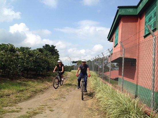 1er Ciclotour Muevaseenbike - Ruta Bohemia Calarcá