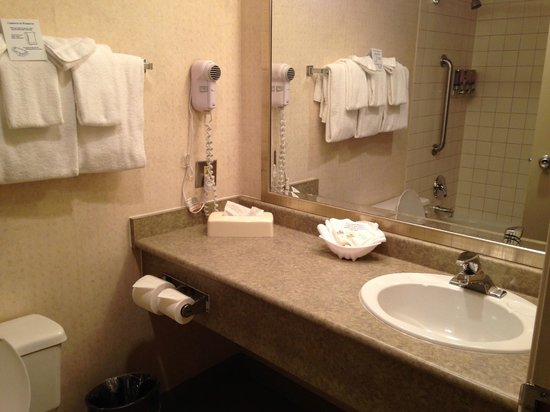 Westmark Whitehorse Hotel and Conference Center: The Bathroom