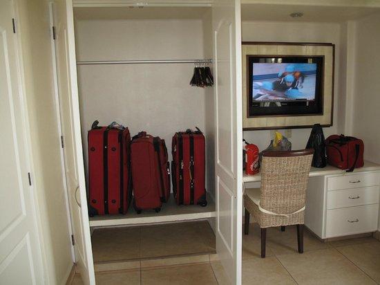 Mision de los Arcos : Closet and Television