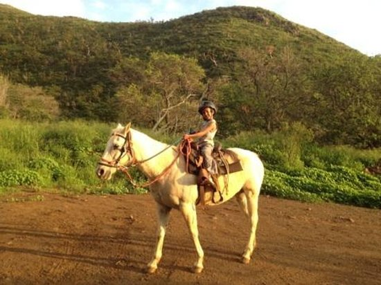 7 year old Lahaina Stables trail rider - had the time of his little life!