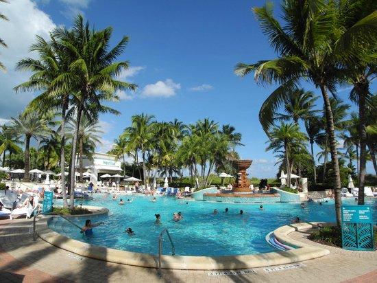 Loews Miami Beach Hotel: Pool