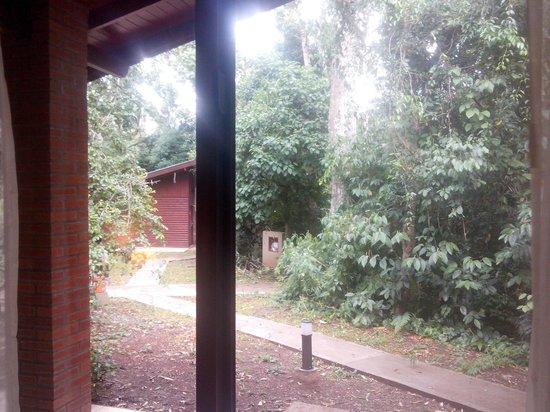 Yvy Hotel de Selva: Vista desde habitación