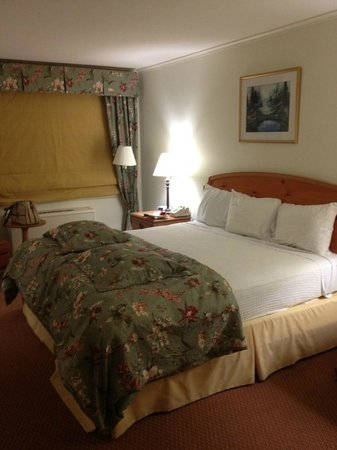 The Inn at the Beeches: King room