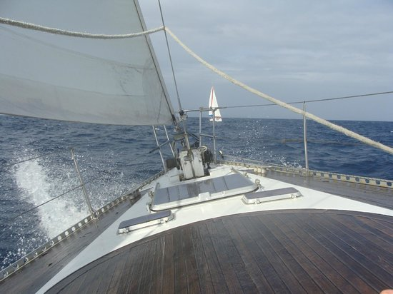 Octopus Yacht: On Route to Tobago Keys