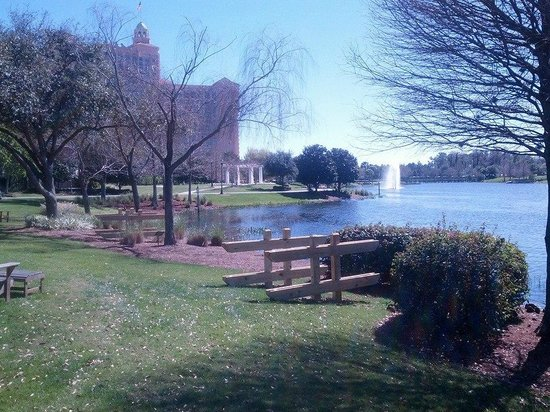 JW Marriott Orlando, Grande Lakes : Walking around the grounds