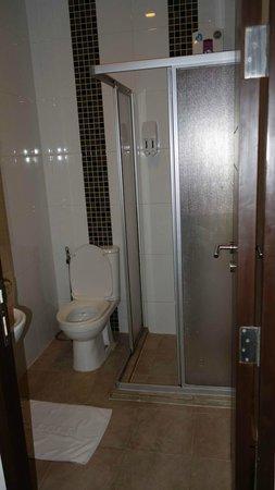 DS67 Suites : Small but efficient bathroom