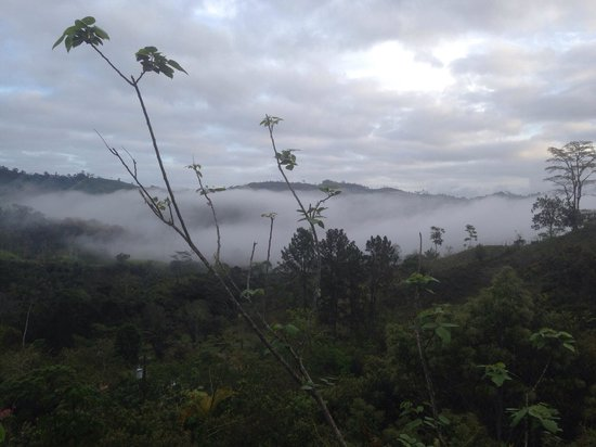 Corredores del Pacuare: Early morning view