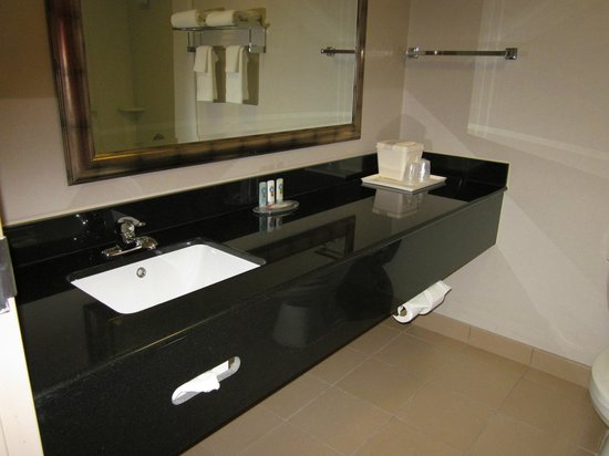 Quality Inn & Suites : Bathroom