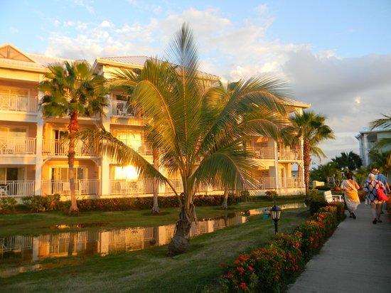 Blau Marina Varadero Resort: Mon complexe, près de la piscine.