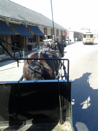 Classic Carriage Works, LLC : Carriage Ride with Magic