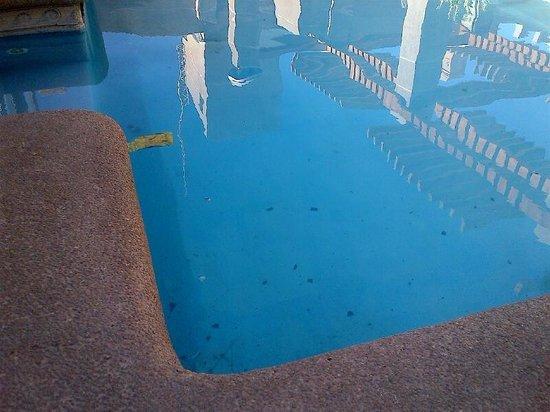 Hotel Diego de Almagro Calama: Piscina sucia