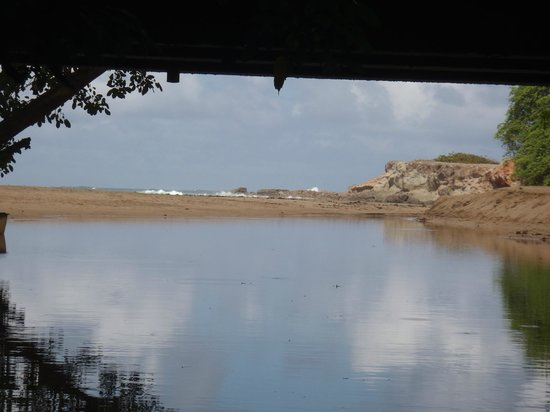 Mangrove Bay Tours: The view of Woodford Hill beach and the Atlantic on your return