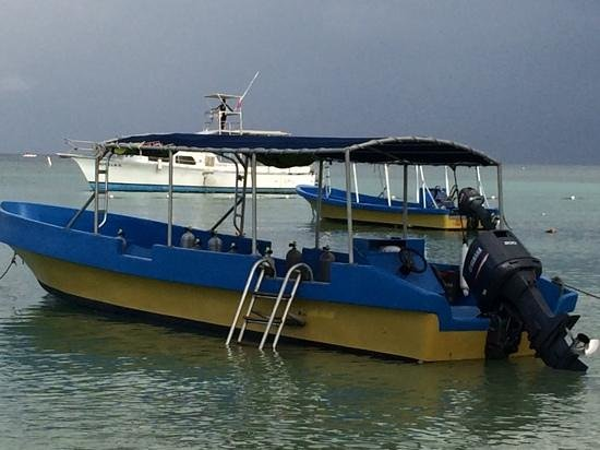 Bananarama Dive Center: Dive Boat