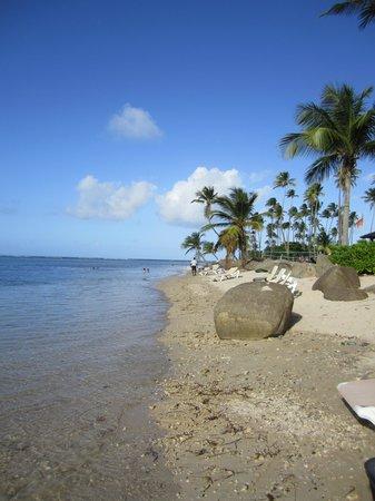 Gran Melia Golf Resort Puerto Rico : Beach at Gran Melia
