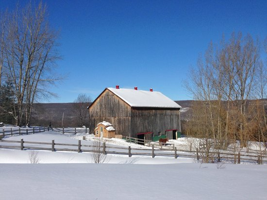 Pretty River Valley Country Inn : View of Barn from walking trail