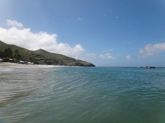 Playa Manzanillo : Playa.