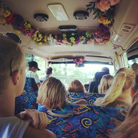 Barefoot Tours : Tour Bus