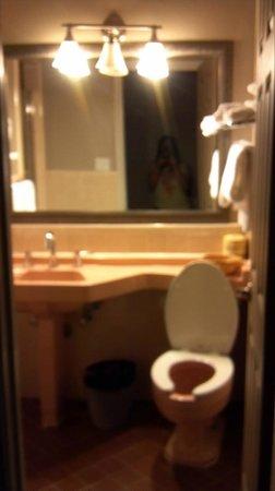 Motel Capri: Bathroom was semi-updated and in good shape.