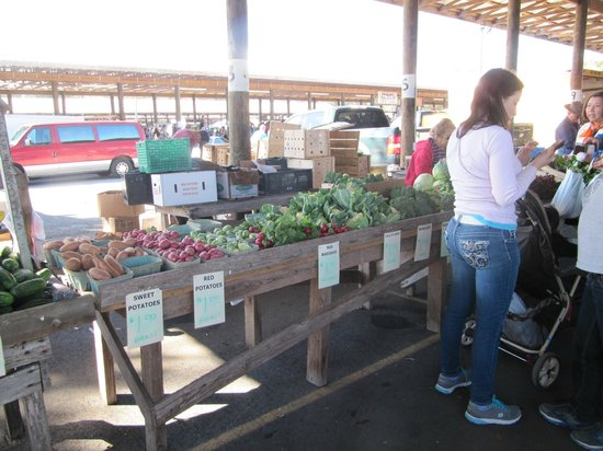 Webster, FL: Fresh Veggies