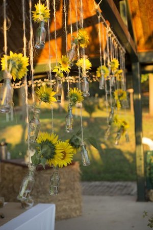 Evendale, OH: The sunflowers beautifully decorated the wedding ceremony and reception