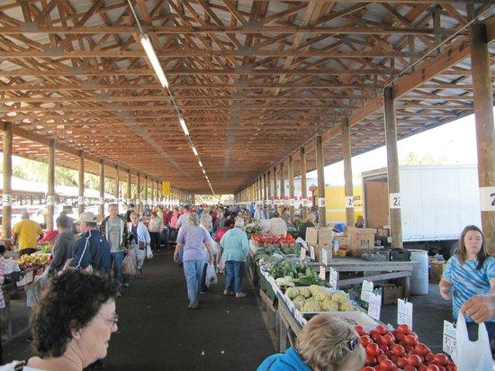 Webster, FL: Farmers Market