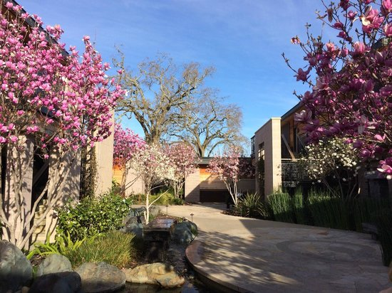 Yountville, CA: Magnolia at Bardessono