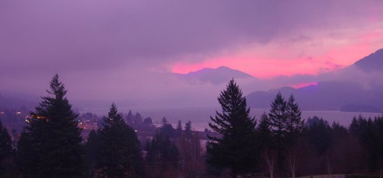Skamania Lodge: Morning view from room