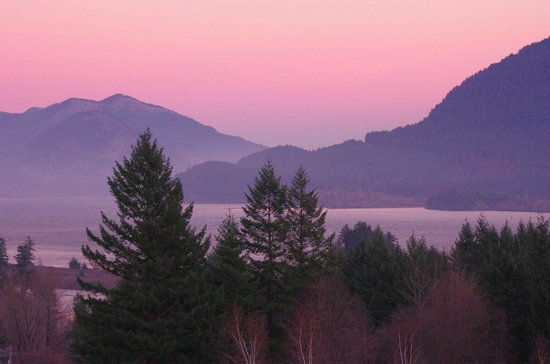 Skamania Lodge: Early morning view from our room