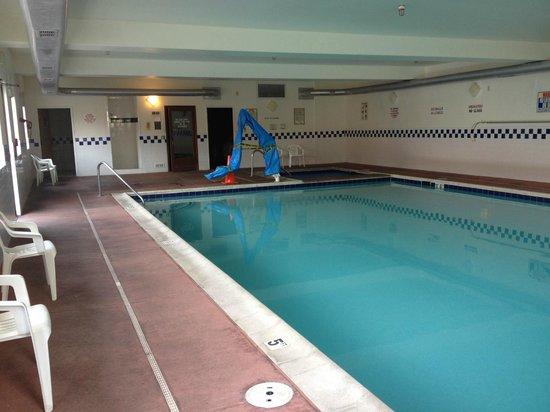 Glenwood Springs Cedar Lodge: Indoor Pool (1/2 bath, outside shower, dry sauna)