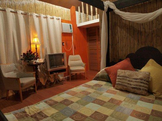 Villa Paulina Spa And Resort
