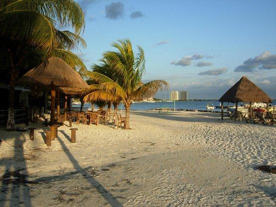 Cancun Bay Resort : Местность за окном