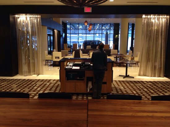 Hilton Albany : Te beautiful Hilton lobby