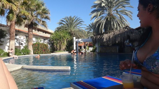 LD Palm Beach : Pileta.