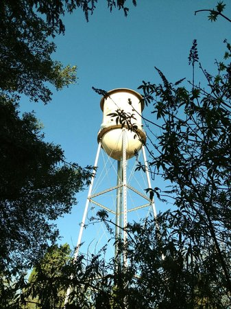 Fairmont Sonoma Mission Inn & Spa: SMI has its own water tower on the premises and it's quite picturesque - they light it up at nig