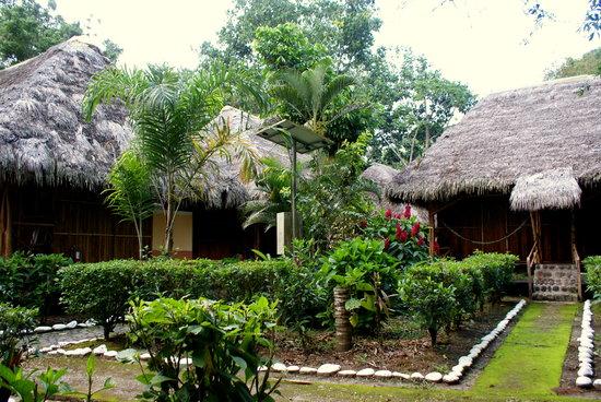 Isla Ecologica Mariana Miller Lodge: Primary