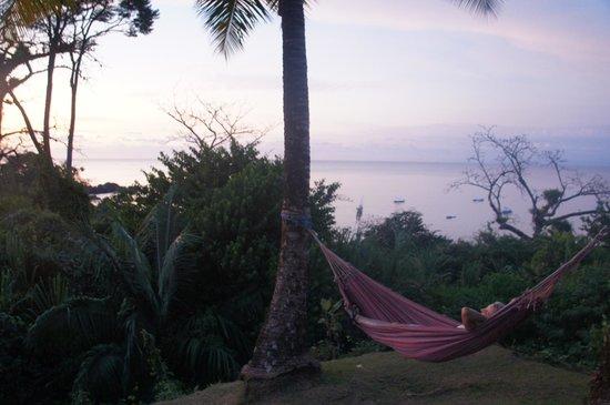 Hotel Las Caletas Lodge: Las Caletas makes relaxing easy with hammocks and beautiful gardens.