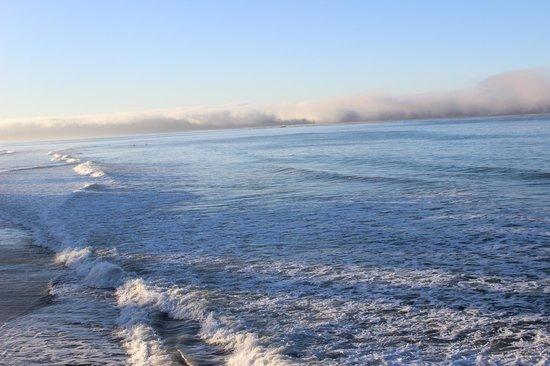 Seahorse Resort : Fog bank