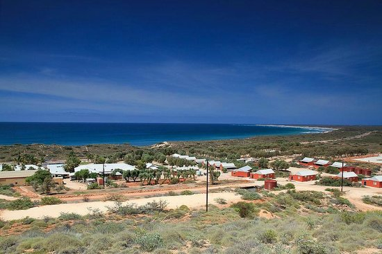 Ningaloo Lighthouse Caravan Park: The great view